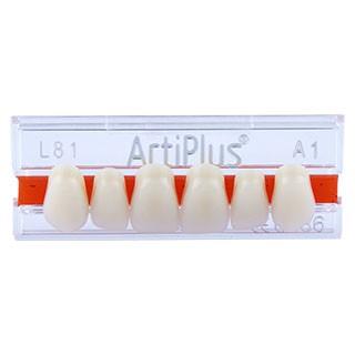 Dente Artiplus L81 Anterior Superior - Dentsply Sirona