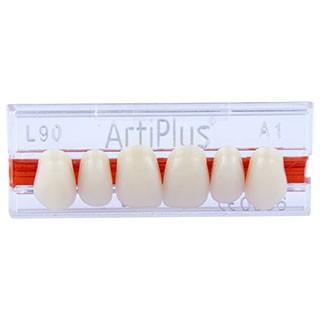 Dente Artiplus L90 Anterior Superior - Dentsply Sirona