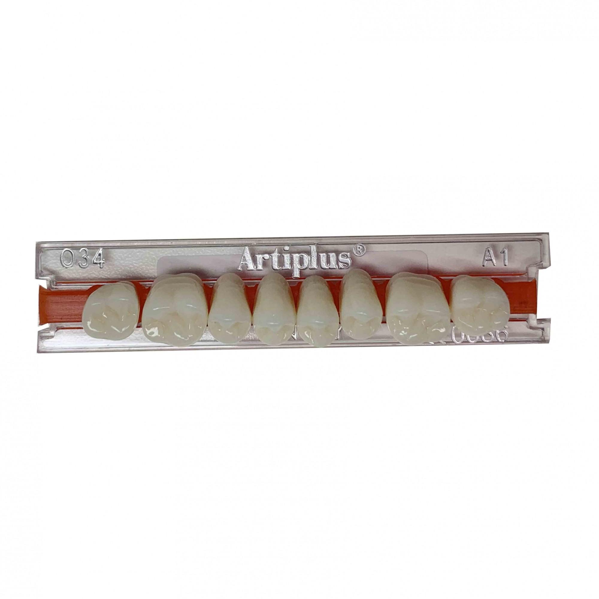 Dente Artiplus O34 Posterior Superior - Dentsply Sirona