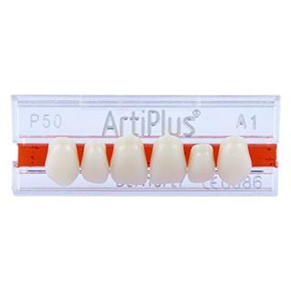Dente Artiplus P50 Anterior Superior - Dentsply Sirona