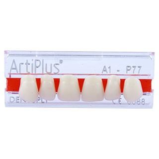 Dente Artiplus P77 Anterior Superior - Dentsply Sirona
