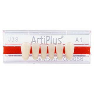 Dente Artiplus U33 Anterior Inferior - Dentsply Sirona
