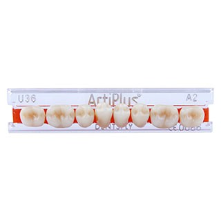 Dente Artiplus U36 Posterior Inferior - Dentsply Sirona