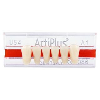 Dente Artiplus U54 Anterior Inferior - Dentsply Sirona