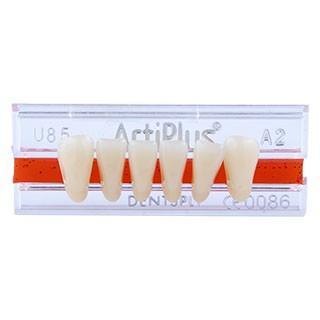 Dente Artiplus U85 Anterior Inferior - Dentsply Sirona