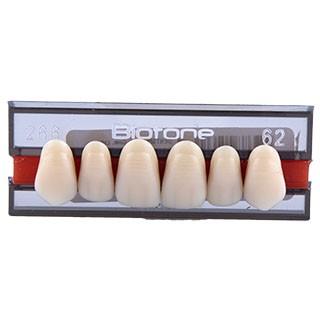 Dente Biotone 266 Anterior Superior - Dentsply Sirona