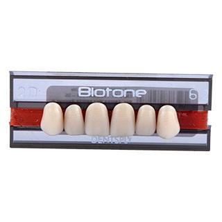 Dente Biotone 2D Anterior Superior - Dentsply Sirona