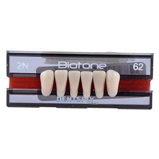 Dente Biotone 2N Anterior Inferior - Dentsply Sirona