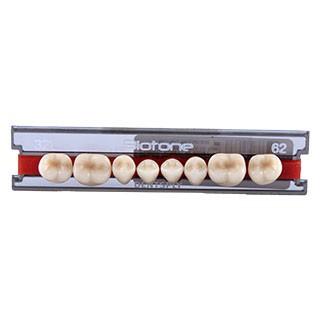 Dente Biotone 32L Posterior Inferior - Dentsply Sirona