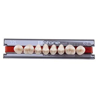 Dente Biotone 32L Posterior Superior - Dentsply Sirona