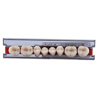 Dente Biotone 34L Posterior Inferior - Dentsply Sirona