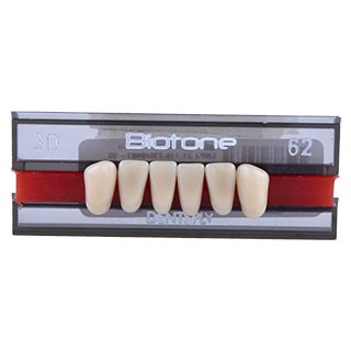 Dente Biotone 3D Anterior Inferior - Dentsply Sirona