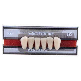 Dente Biotone 3M Anterior Inferior - Dentsply Sirona