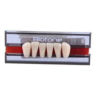 Dente Biotone 3N Anterior Inferior - Dentsply Sirona
