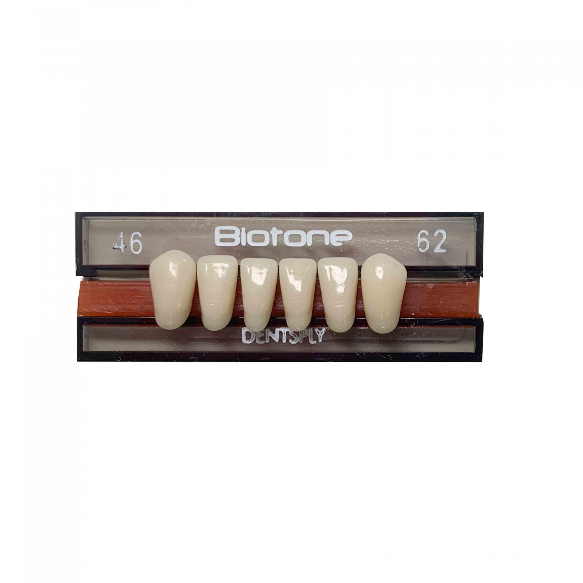 Dente Biotone 46 Anterior Inferior - Dentsply Sirona