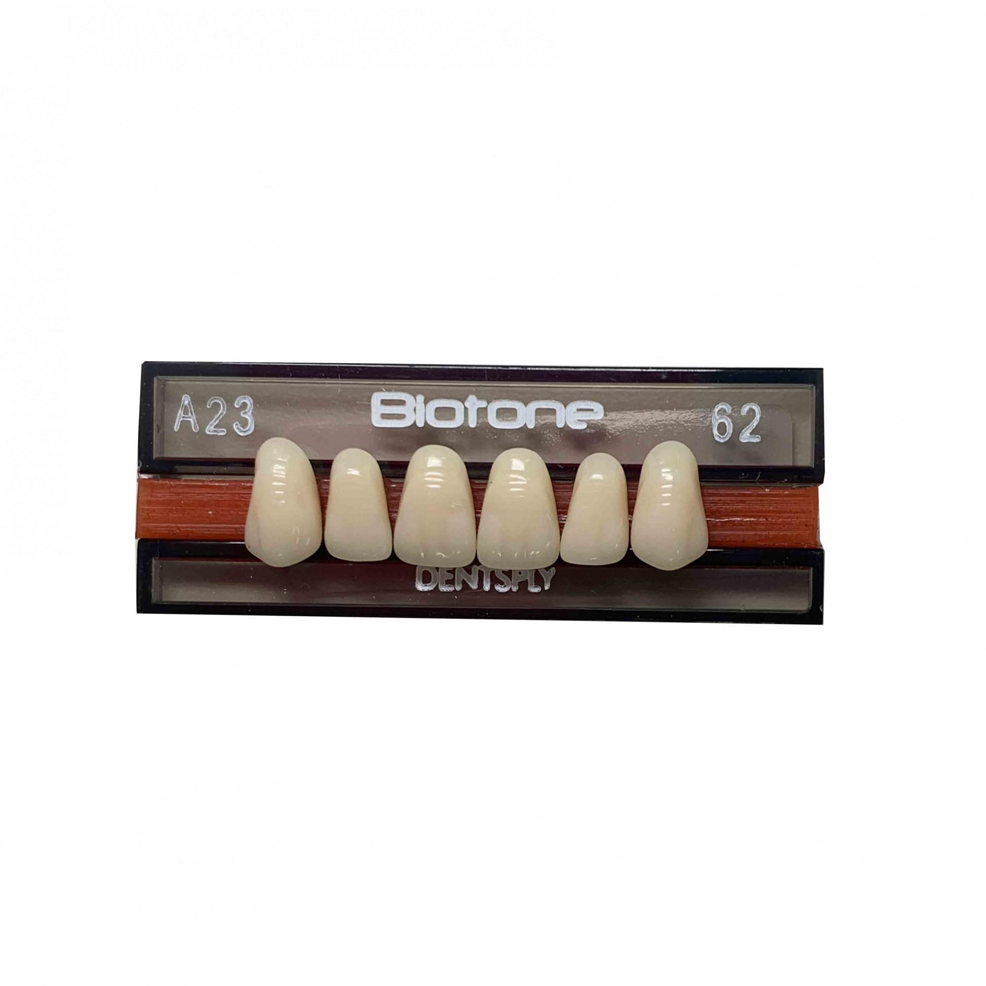 Dente Biotone A23 Anterior Superior - Dentsply Sirona