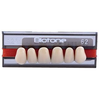 Dente Biotone IPN A25 Anterior Superior - Dentsply Sirona