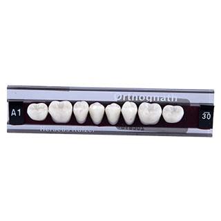 Dente Classic Orthognath U30 Posterior Inferior - Kulzer