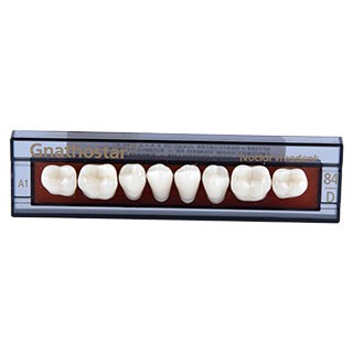 Dente Gnathostar D84 Posterior Inferior - Ivoclar Vivadent