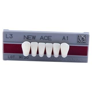 Dente New Ace L3 Anterior Inferior - Kota