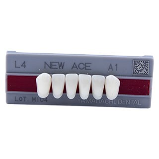Dente New Ace L4 Anterior Inferior - Kota