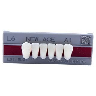 Dente New Ace L6 Anterior Inferior - Kota