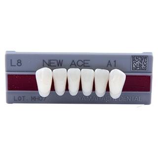 Dente New Ace L8 Anterior Inferior - Kota