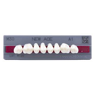 Dente New Ace M30 Posterior Superior - Kota