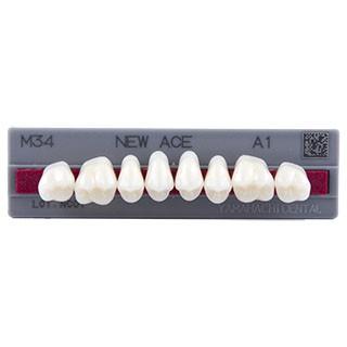 Dente New Ace M34 Posterior Superior - Kota