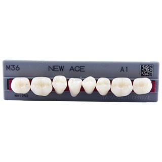 Dente New Ace M36 Posterior Inferior - Kota