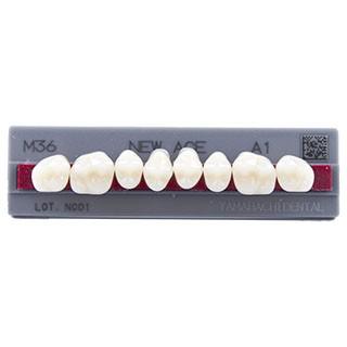 Dente New Ace M36 Posterior Superior - Kota