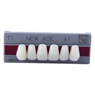 Dente New Ace T1 Anterior Superior - Kota