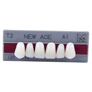 Dente New Ace T2 Anterior Superior - Kota