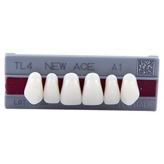 Dente New Ace TL4 Anterior Superior - Kota