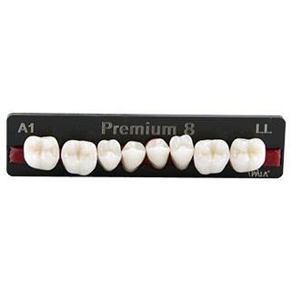 Dente Premium LL Posterior Inferior - Kulzer