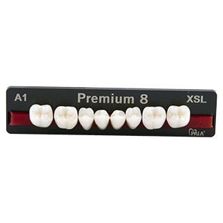 Dente Premium XSL Posterior Inferior - Kulzer