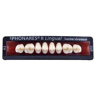 Dente SR Phonares II LU3 Lingual Posterior Superior - Ivoclar Vivadent