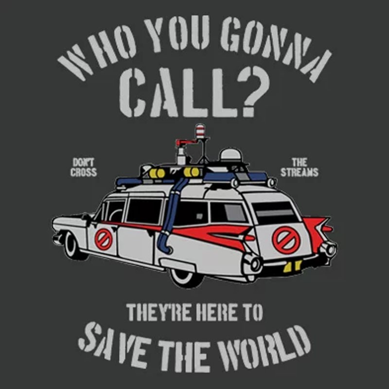 Camiseta Who You Gonna Call?