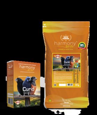 Harmony Birds Curió Competição