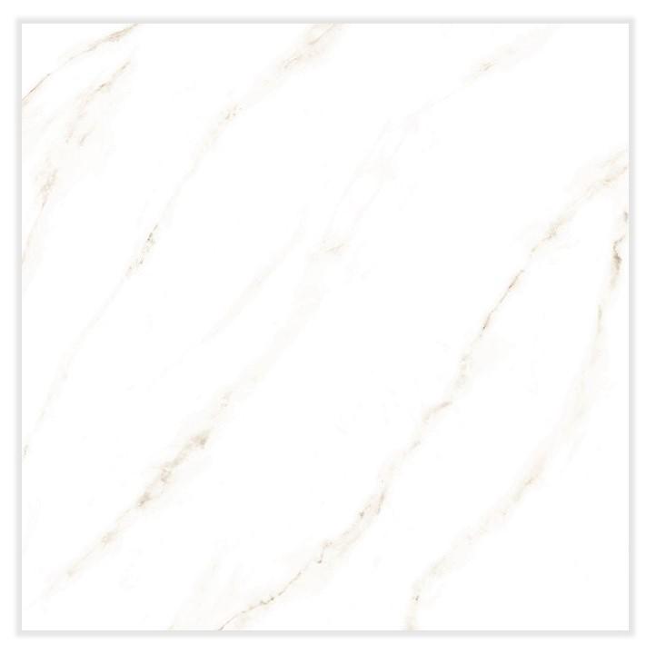 Piso Vivence  170077 Carrara Retificado 56x56