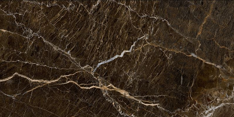 Porcelanato Damme Elegant Brown  61x120 cm Polido