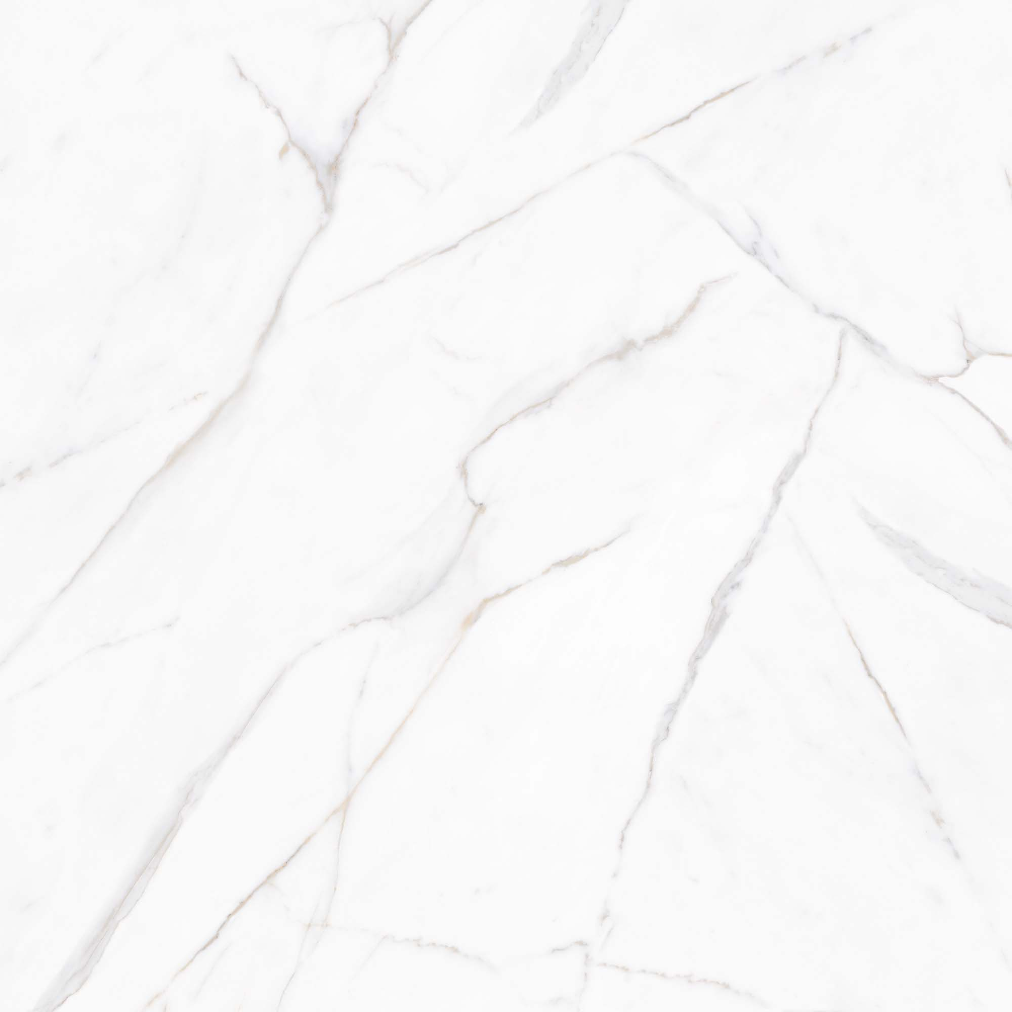 Porcelanato Embramaco Calacata Gold 82x82 cm  82008 Polido  - Casa Mattos