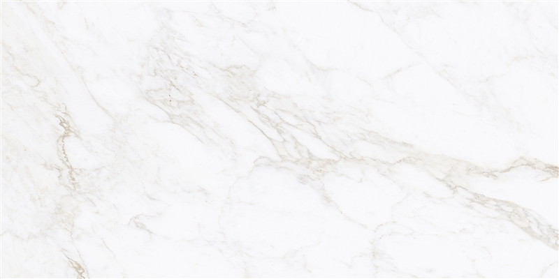 Porcelanto Damme Renoir 62X121cm Acetinado