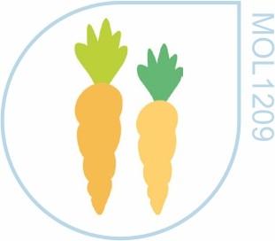 Molde Cenoura 2 tamanhos