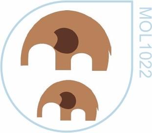Molde Elefante Mamute