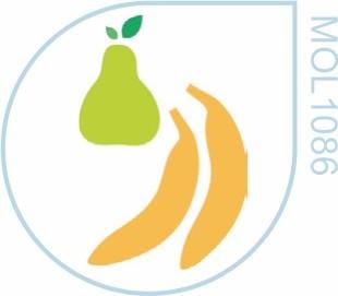 Molde Pêra e Banana