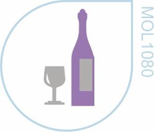 Molde Vinho e Taça