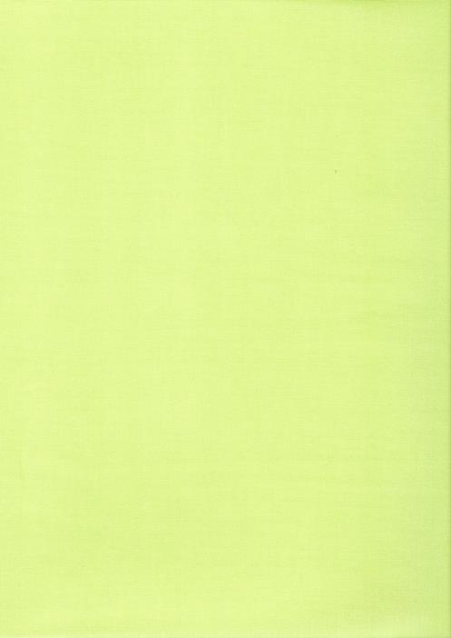 Tecido Fast Patch Termodinâmico Liso 24x35cm - COR:  L256V VERDE DOCE