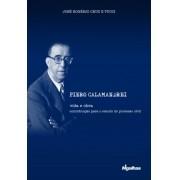 Piero Calamandrei: vida e obra - contribuição para o estudo do processo civil