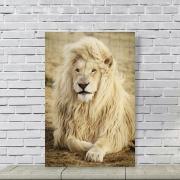 Placa Decorativa Leão Branco